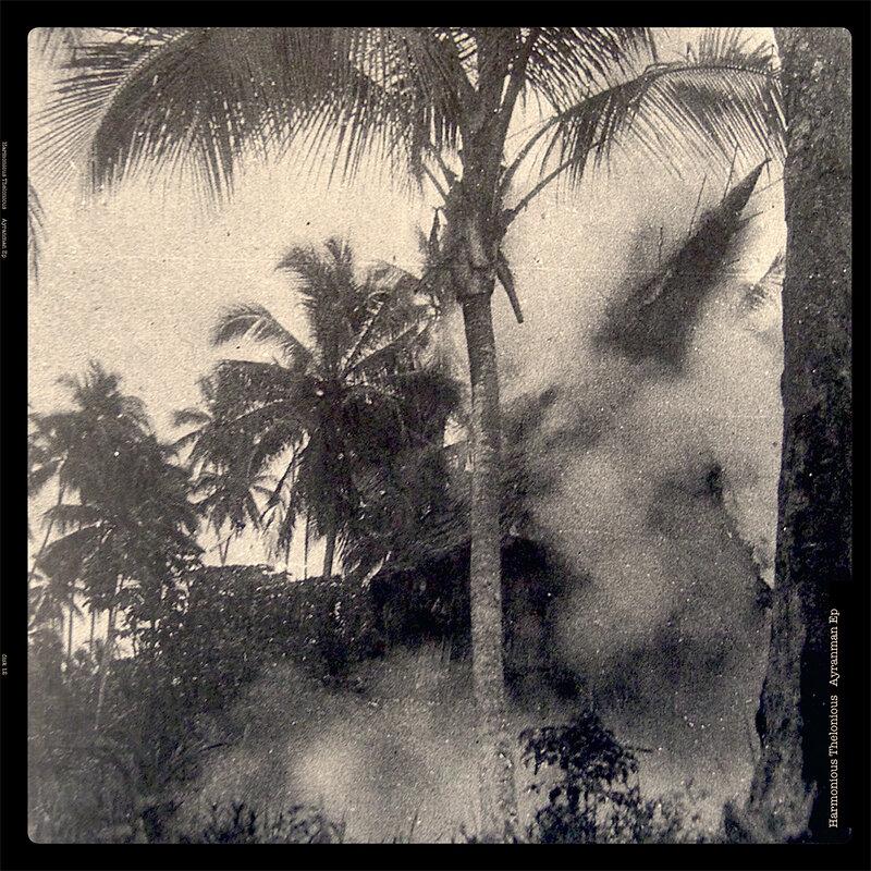 Cover art - Harmonious Thelonious: Ayranman EP