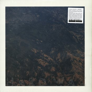 Cover art - Sarah Davachi: Vergers