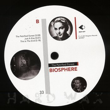 Cover art - Biosphere: The Petrified Forest