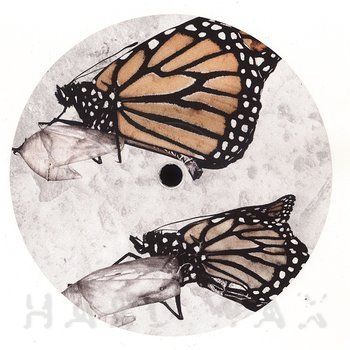Cover art - Homemade Weapons & MC Fokus: Chrysalis EP