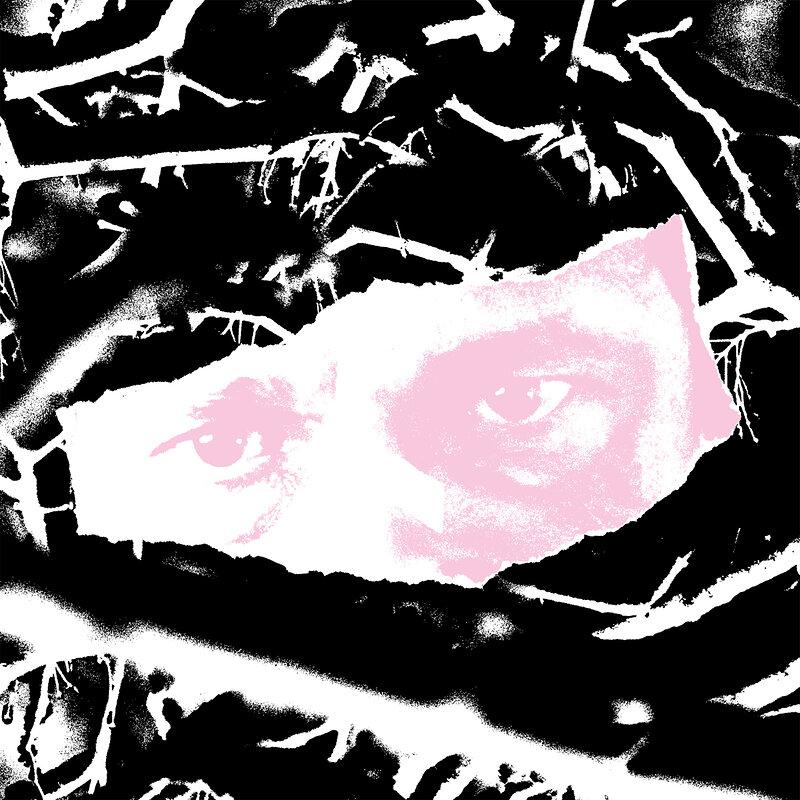 Cover art - Biome: Fargo