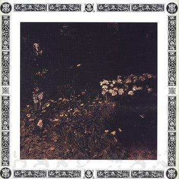 Cover art - Sarah Davachi: Pale Bloom