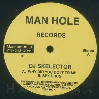 Cover art - DJ Skelector: Why Did You Do It To Me