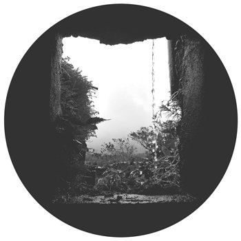 Cover art - Hysee: Circular Dispute