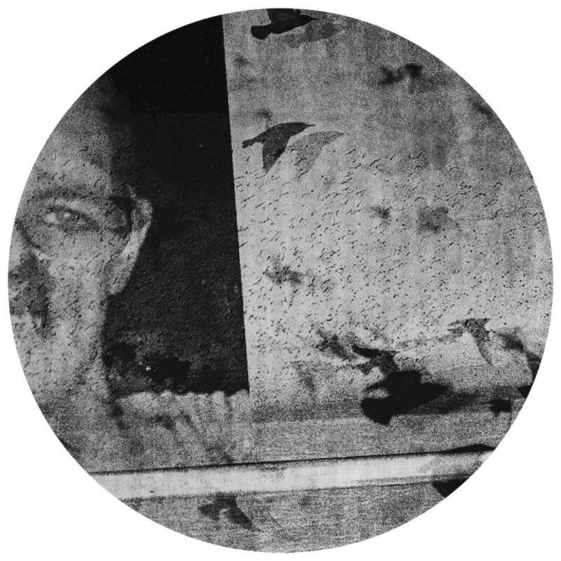 Cover art - Sleeper: Seagulls
