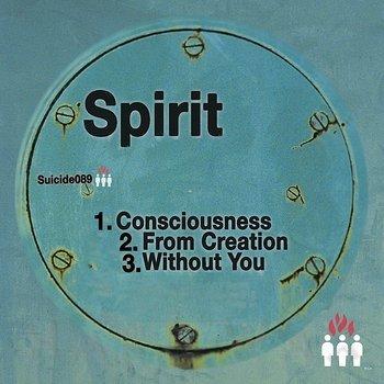 Cover art - Spirit: Consciousness