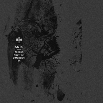 Cover art - SNTS: Across Another Dimension