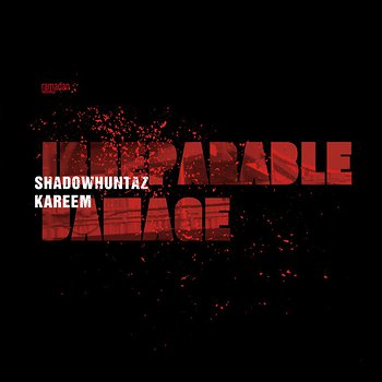 Cover art - Shadow Huntaz & Kareem: Irreparable Damage
