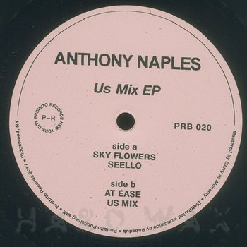 Cover art - Anthony Naples: Us Mix