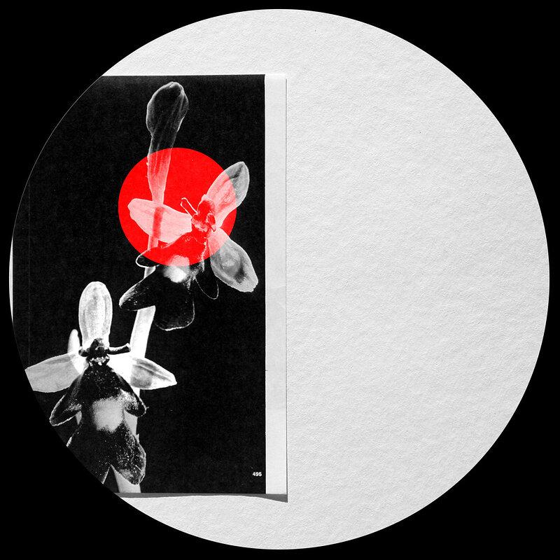 Cover art - Graze: Kliph EP