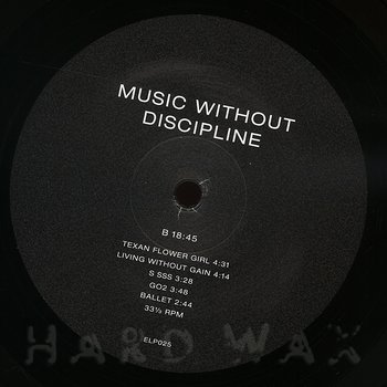 Cover art - L/F/D/M: Music Without Discipline