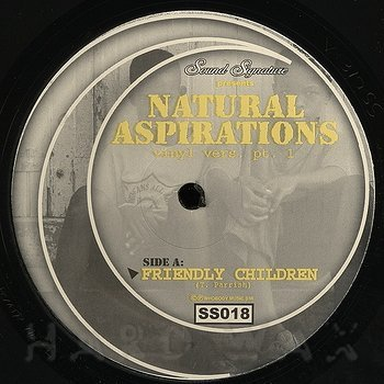 Cover art - Theo Parrish: Natural Aspirations