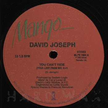 Cover art - David Joseph: You Can't Hide