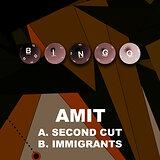 Cover art - Amit: Second Cut