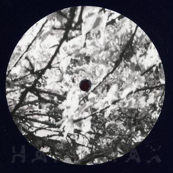 Cover art - Ø: Kantamoinen