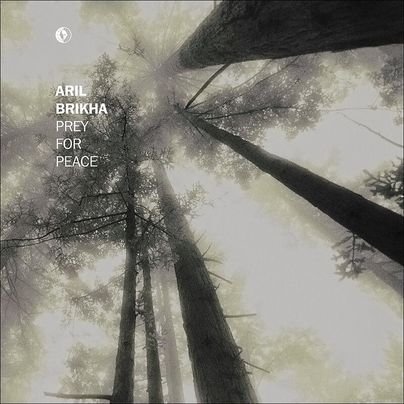 Cover art - Aril Brikha: Prey For Peace