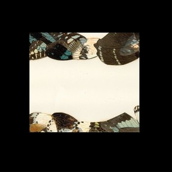 Cover art - Pantha Du Prince: Butterfly Girl Versions