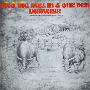 Cover art - King Tubbys: Two Big Bull in a One Pen (Dubwise Versions)