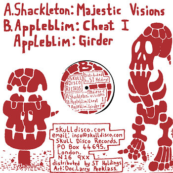 Cover art - Shackleton: Majestic Visions