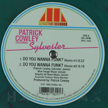 Cover art - Sylvester: Do Ya Wanna Funk