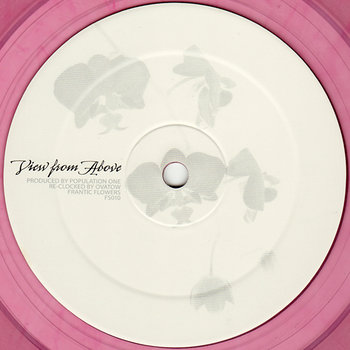 Cover art - Population One: View From Above