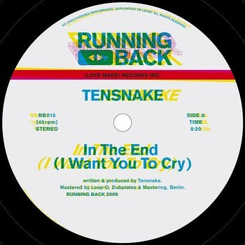 Cover art - Tensnake: In The End (I Want You To Cry)