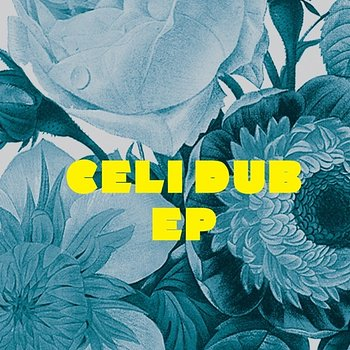 Cover art - Alex Kid: Celi Dub EP