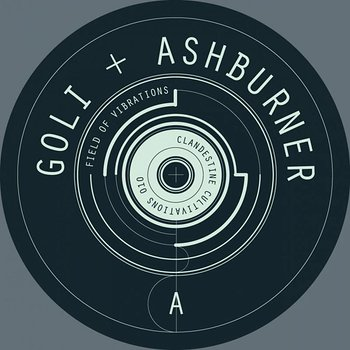 Cover art - Goli + Ashburner: Field Of Vibrations