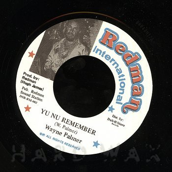 Cover art - Wayne Palmer: Yu Nu Remember