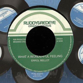 Cover art - Errol Bellot: What A Wonderful Feeling