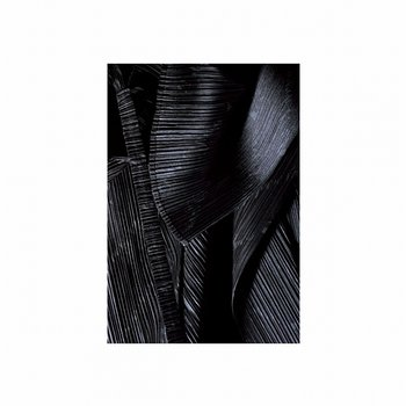 Cover art - Roman Flügel: Brasil