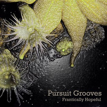 Cover art - Pursuit Grooves: Frantically Hopeful