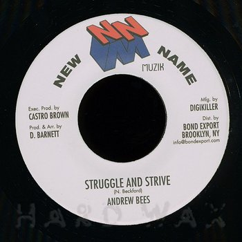 Cover art - Andrew Bees: Struggle And Strive
