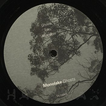 Cover art - Monolake: Ghosts