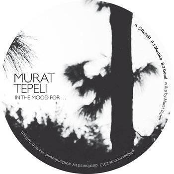 Cover art - Murat Tepeli: In The Mood For...