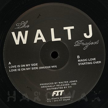 Cover art - The Walt J Project: Love Is On My Side