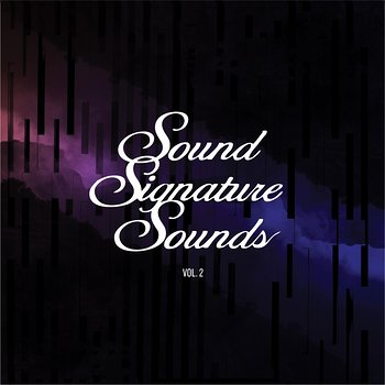 Cover art - Theo Parrish: Sound Signature Sounds Vol. 2