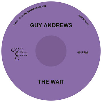 Cover art - Guy Andrews: The Wait