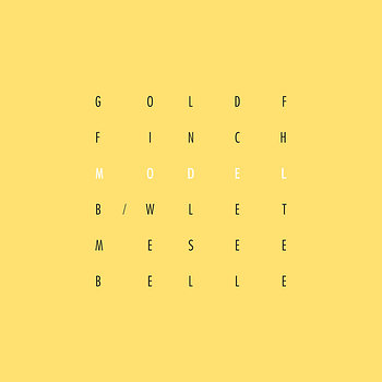Cover art - Goldffinch: Model