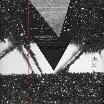 Cover art - Ben Vida: Splitaggregatepulseripper (Damaged iiii)