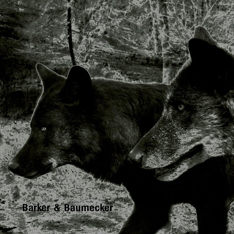 Cover art - Barker & Baumecker: Transsektoral