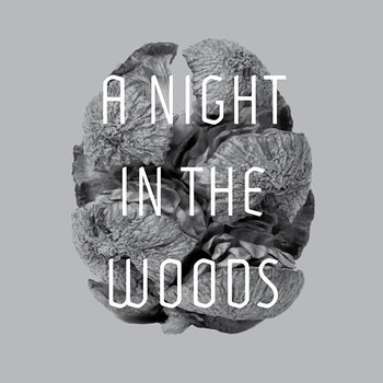Cover art - Tyler Friedman: A Night In The Woods