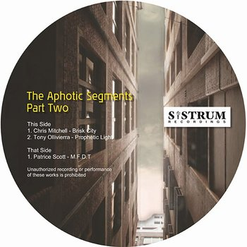 Cover art - Various Artists: The Aphotic Segments Part 2