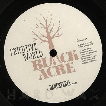 Cover art - Primitive World: Danceteria