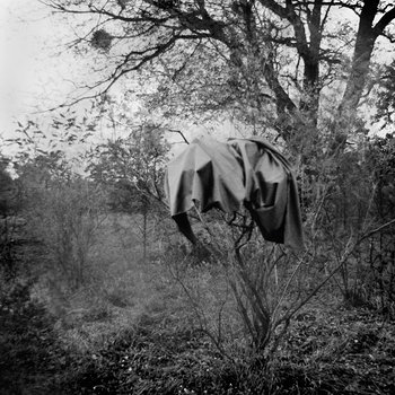 Cover art - Scherbe: Jardin Du Midi EP