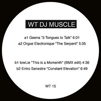 Cover art - Various Artists: WT DJ Muscle 2