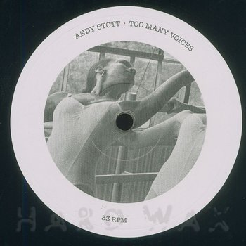 Cover art - Andy Stott: Too Many Voices