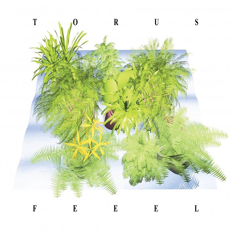 Cover art - Torus: Feeel