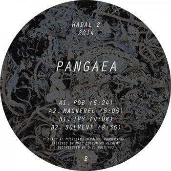 Cover art - Pangaea: Pob