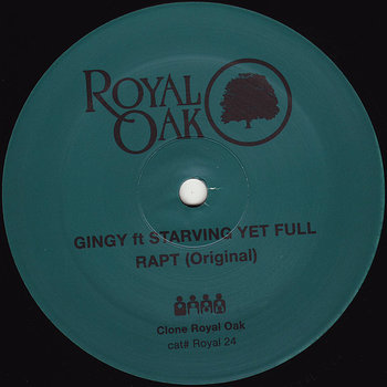 Cover art - Gingy feat. Starving Yet Full: Rapt